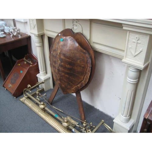 403 - Tortoise Shell mounted on an Oak Sheild...
