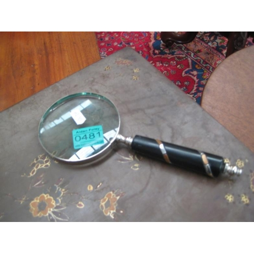 481 - Magnifying Glass...