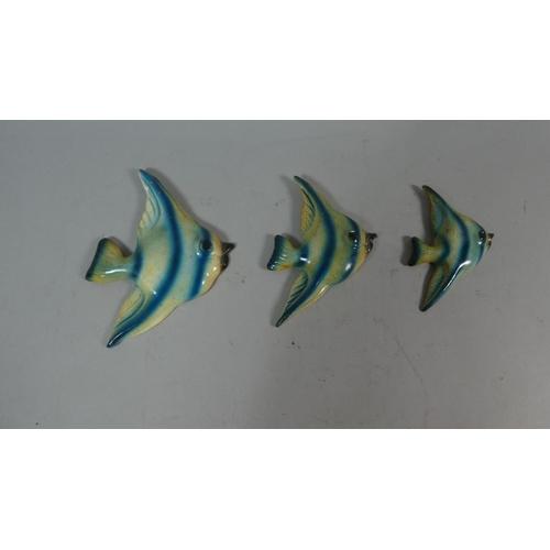 30 - A Set of Three Graduated Ceramic Angel Fish...