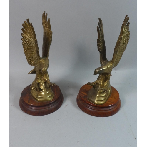 33 - A Pair of Brass Studies of Eagles Attacking Prey on Circular Wooden Base, 24cms High...