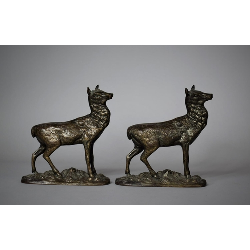 25 - A Pair of Late 19th Century Bronze Mounts in the Form of Stags (Missing Antlers)