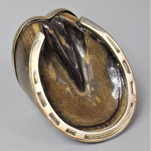 10 - A 1940's Novelty Desktop Match Holder Formed From a Horse's Hoof with Silver Mount Having Rear Match...