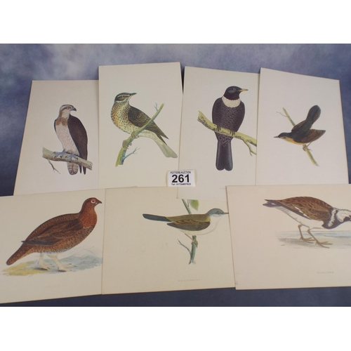 261 - Sixteen vintage bird prints...