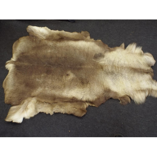 286 - large Genuine Reindeer skin...