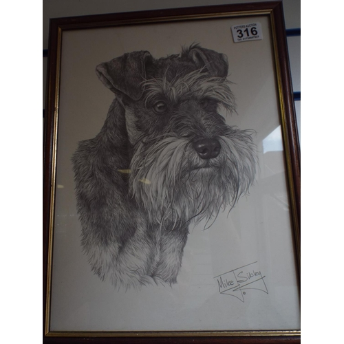 316 - Framed Print of a Schnauzer by Mike Sibley...