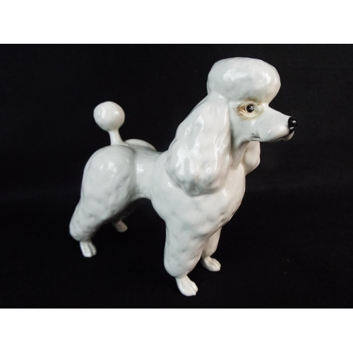 21 - Beswick Standard poodle. 6 inches tall....