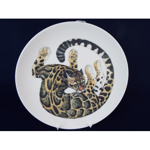 60 - Wedgwood decorative plate showing a Bengal cat. 9 inches in diameter...