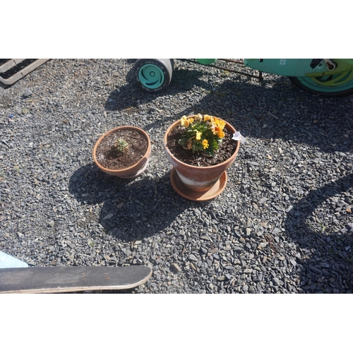40 - 2 potted planters