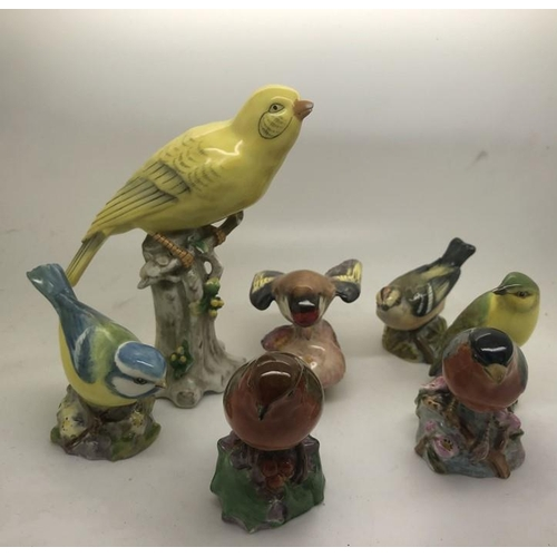 52 - Six Royal Worcester bird figures, Bullfinch, Wood Warbler, chip to beak, Robin, Goldfinch, chip to w...