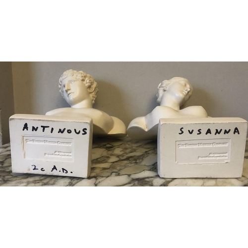 54 - Two British Museum Company busts. 30cms h, good condition....