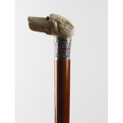 449 - A 19th century carved ivory walking cane, the handle modelled as the head of a hound with inset glas...