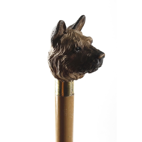 467 - A Swaine & Adeney Ltd., London carved wooden handled walking cane, modelled as the head of a terrier...