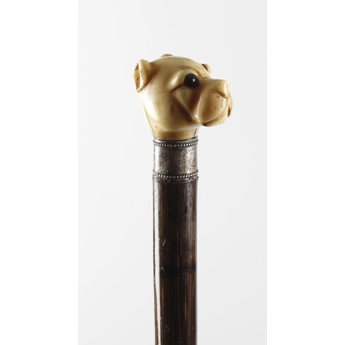 468 - An early 20th century carved ivory handled walking cane, the carved ivory handle modelled as the hea...