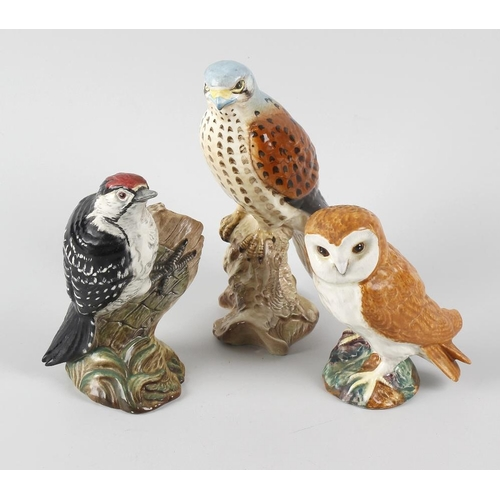 53 - A group of five Beswick birds, comprising a Kestrel, a Woodpecker, a Barn Owl, a Stonechat (a/f), an...