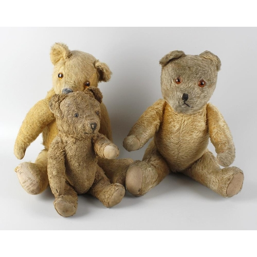 599 - A box containing two gold plush teddy bears, each with wide pricked ears and amber coloured eyes, to...