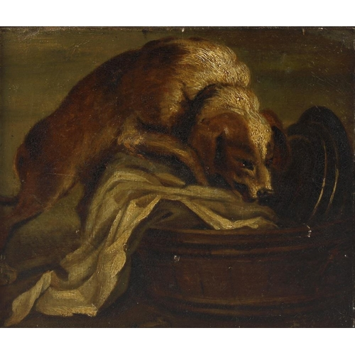 713 - A 19th century English school, an oil painting on canvas, laid on board, study of an inquisitive dog...