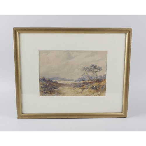 728 - H Barnett (early 20th century) two framed and glazed watercolours, Connemara landscape studies, each...