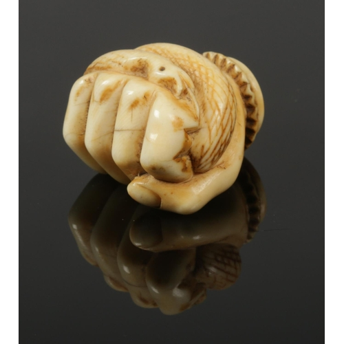 50 - A carved ivory parasol handle formed as a clenched fist holding a serpent.