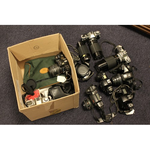 567 - A collection of various cameras to include Sigma, Nikon, Canon, etc. AF...