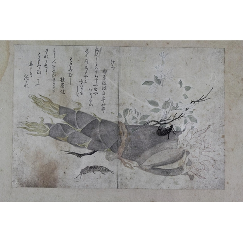 203 - A Kitagawa Utamaro Japanese print with insects and crazy poems. framed and glazed.