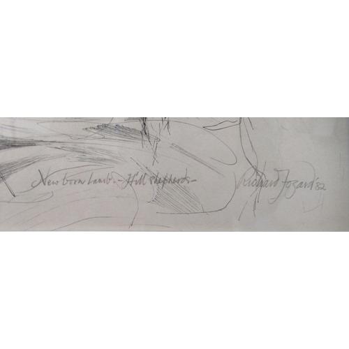 52 - Richard Mozart - 'New born lamb - Hill Shepherds' pen & ink bears a pencil inscripti...