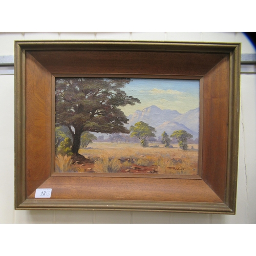 12 - P Wort - a North East Transvaal South African landscape oil on canvas bears a signature & date...