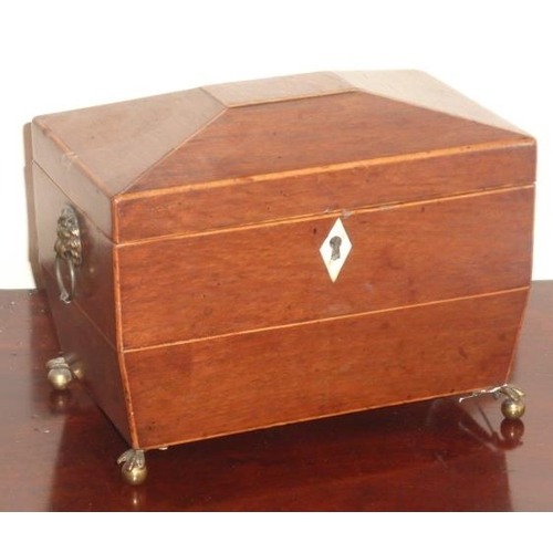465 - An early 19th Century partridgewood and boxwood strung two division Tea Caddy, the Anglesey style ki...