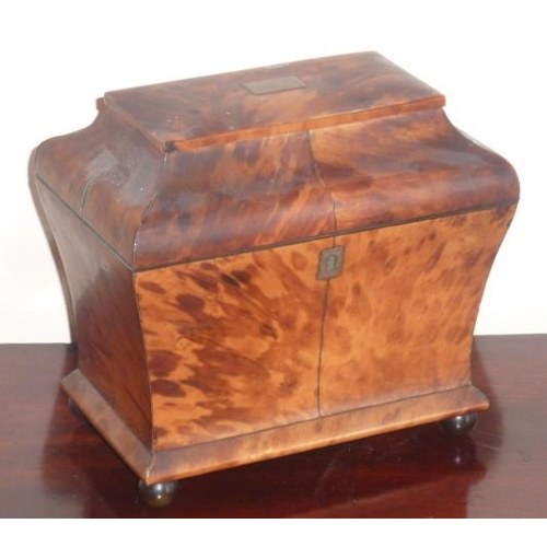 466 - A late Regency period/early Victorian blond tortoiseshell veneered two-division Tea Caddy, the recta...