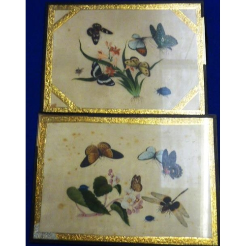488 - A pair of Orientalist glazed Watercolours of various butterflies around flowering plants (foxing), e...