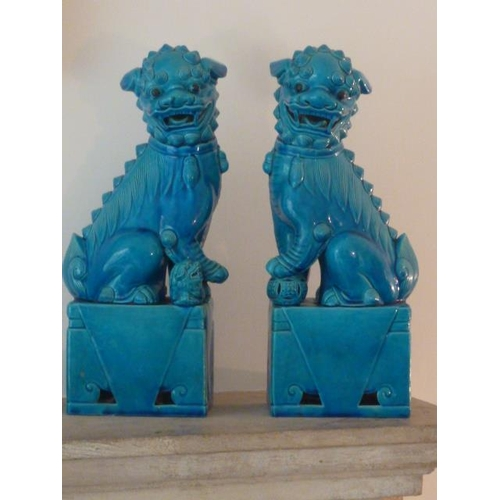 52 - A pair of large turquoise glaze Chinese Karashishi (Buddhistic Temple Lions), each open-mouthed, one...