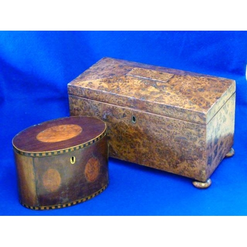 528 - An early 19th Century two division Tea Caddy on squat bun feet  (possibly mulberry?), 31cm, together...