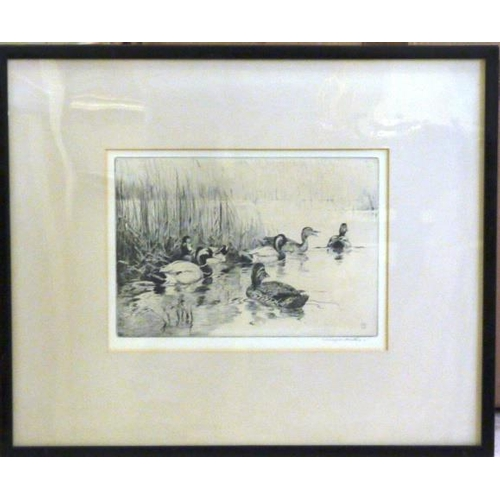 554 - * Winifred Austen, an ebonised framed and glazed monochrome Etching ''The Decoy Pool'', original pap...