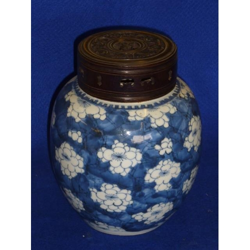 92 - A Chinese ovoid porcelain Jar hand decorated with prunus against a cracked ice background in Kangxi ...