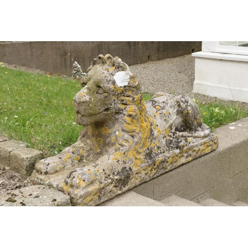588 - A good pair of early compositionStone Figures, each modelled as a recumbent lion on rectangular bas...