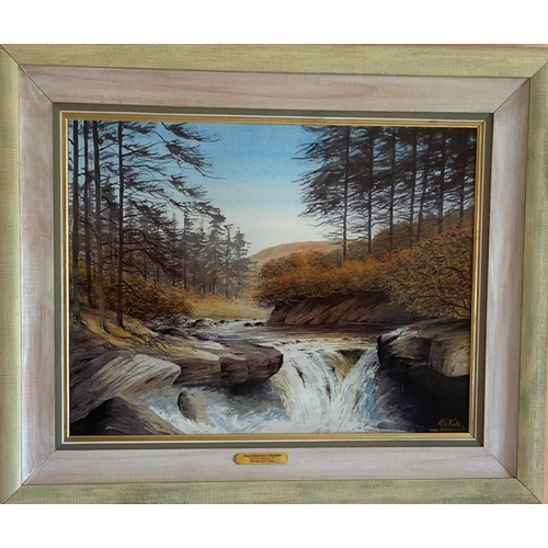 25 - Peter Knuttel (b.1945) Watercolour, ''Near Rathdrum, Co. Wicklow,'' signed and inscribed, 23'' x 30'...