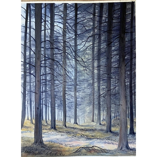 28 - Peter Knuttel (b.1945) Watercolour, ''Woodland, Co. Wicklow,'' signed, 29'' x 22'' (73cms x 56cms). ...