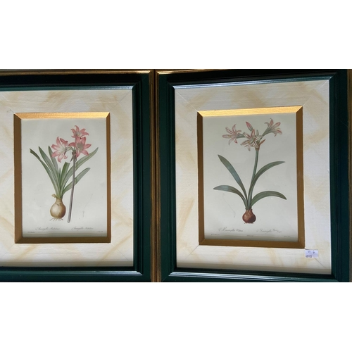 41 - A pair of colourful Flower Prints, in attractive frames, 11'' x 8'' (28cms x 20cms); together with a...