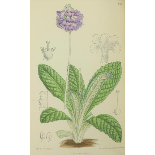 445 - Extraordinary Survivor with Approx. 10,700  PlatesCurtis (William), 1746 - 179, & other Edito...