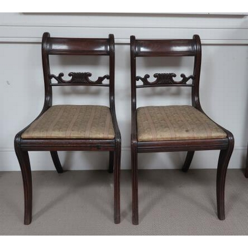 50 - A pair of George IV mahogany dining chairs, carved mid rail, drop in seats on reeded sabre supports.