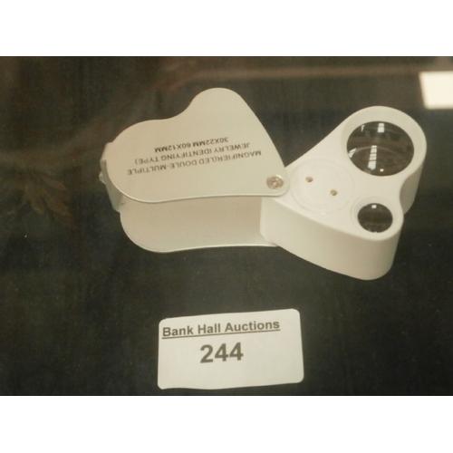 244 - Magnifying LED doule eyepiece...