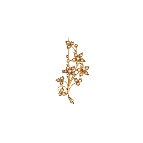 130 - AN ANTIQUE SEED PEARL BROOCH, of naturalistic design, mounted in yellow gold...