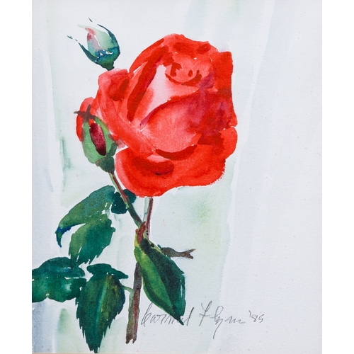 580 - CARMEL FLYNN (Irish 20th Century), ''Still Life of a Rose'', water colour, 10 x 12'', signed and dat...