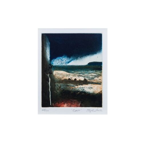 571 - (After) STEPHEN LAWLOR (Irish contemporary), Coast, limited edition 43/100, lithograph, 5.5x4.5''...