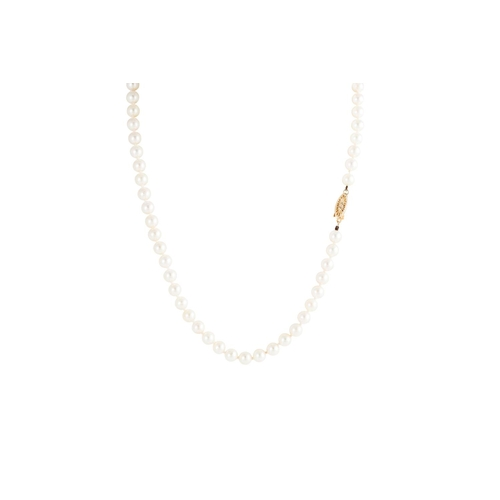 13 - A CULTURED PEARL NECKLACE, the uniform cream toned pearls to a 9ct yellow gold clasp, the pearls mea...