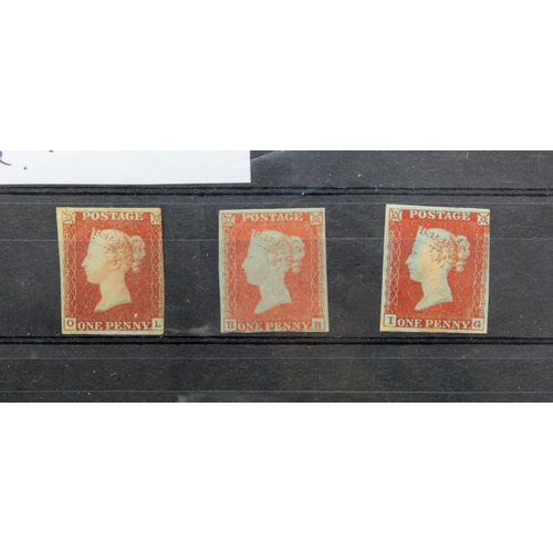 16 - GB - 1841 QV Imperf Penny Reds mounted mint, various shades and papers. Good example of Ivory Head x...