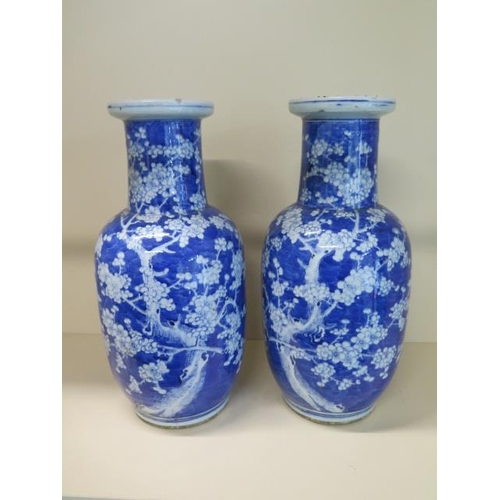 312 - A pair of Chinese 19th century blue and white prunus vases each hand painted with two prunus trees i...