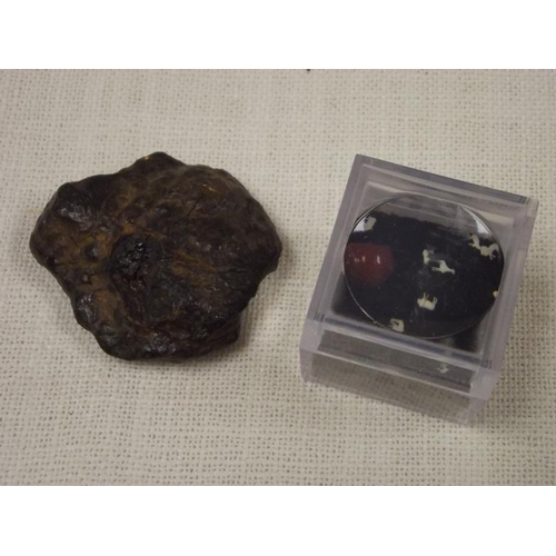 20 - Chinese meteorite, reputed to be 4 billion years old, and a set of minute carved animal figures cont...