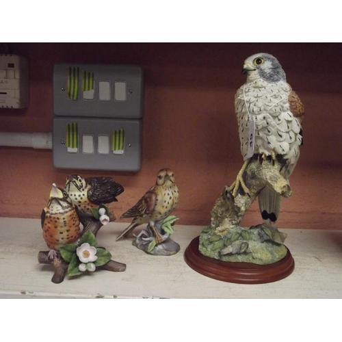 49 - Border Fine Arts Kestrel, and two other bird figures....