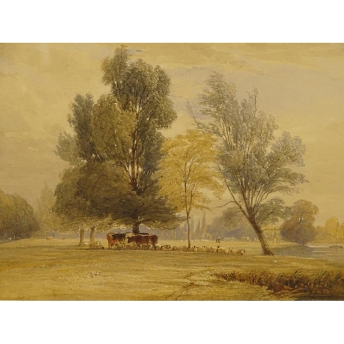 15 - Edward Duncan (1803-1882). Cattle and sheep in parkland, watercolour, signed, 21.5cm x 30cm.....