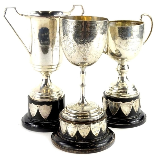 42 - Three various silver cups, two with two handles, another goblet form with engraved decoration, each ...